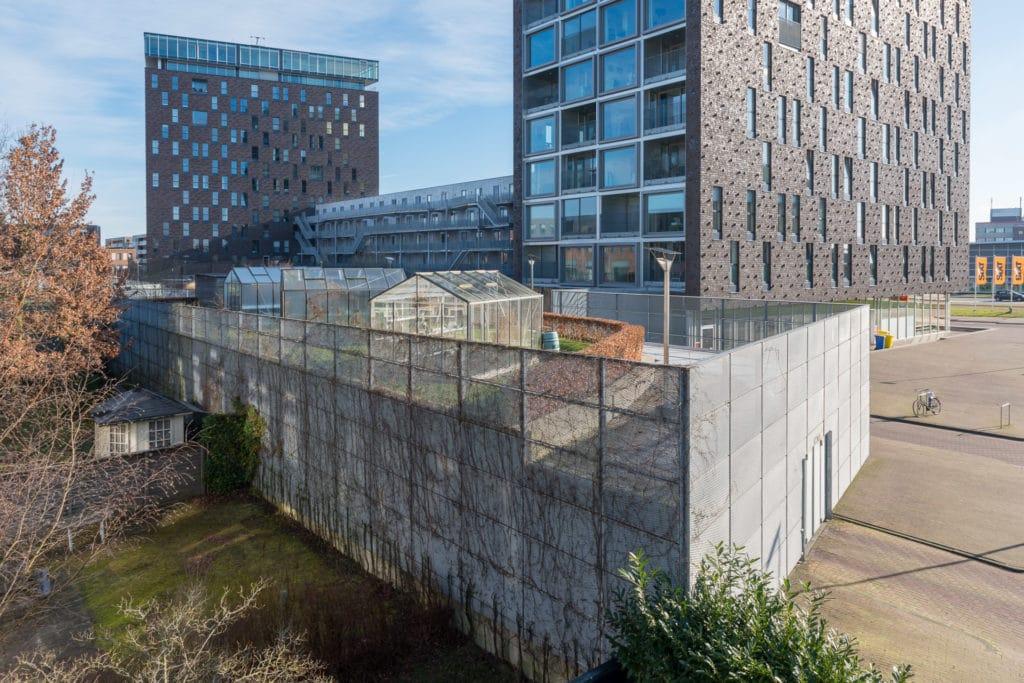 Kop van Oost Groningen met tuinkassen