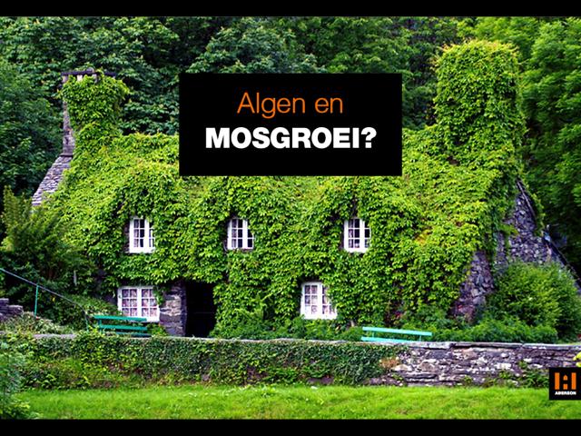Een foto van een boerderij volledig groen begroeid ter begeleiding van een blog over algen en mosgroei