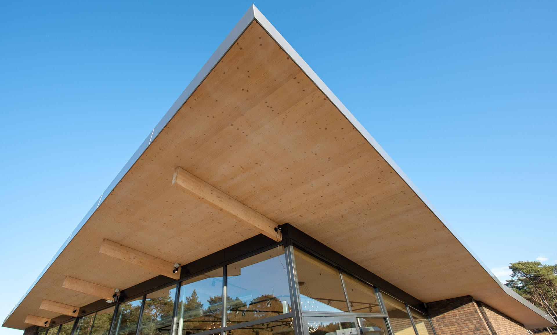 Punt van een strak dak met hout en een