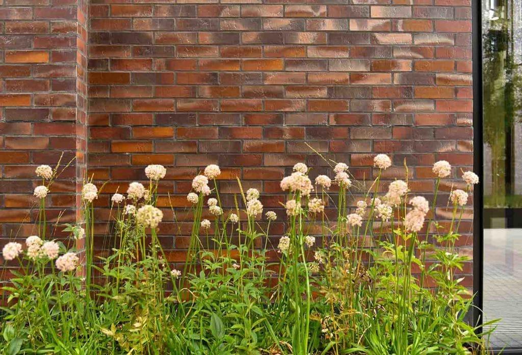 Bruine strips ter illustratie van het gevelsysteem A-Brick met ervoor groene planten